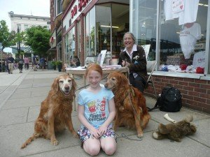 therapy dog nteracting with the public