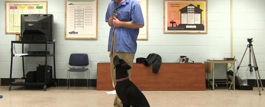 A New Path: Key Role of Inmates in Training Psychiatric Service Dogs