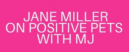 Jane Miller Guest on Positive Pets with MJ