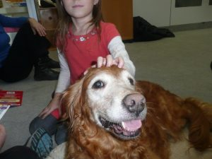 Therapy Dogs OPL Dogread