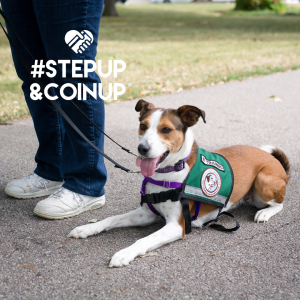 #stepup&coinup
